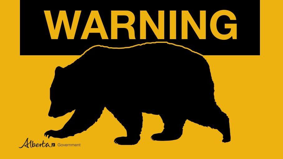warning bear